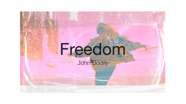 Freedom Artwork image